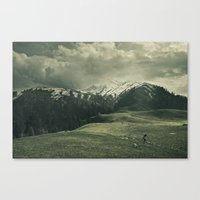 Spider mountain II Canvas Print