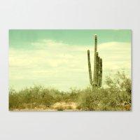 Desert Cactus Canvas Print