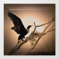 Beauty And The Branch Canvas Print