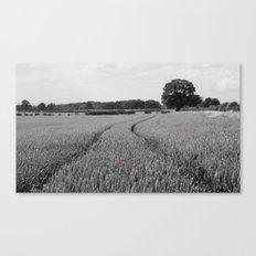 Summer Fields #7 Canvas Print