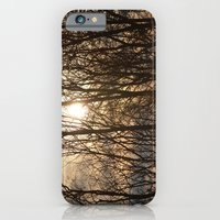 Iowa Winter Sun iPhone 6 Slim Case