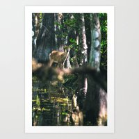 Forest Fawn Art Print