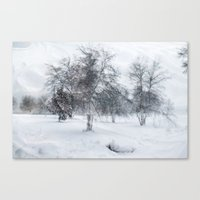 Wild Wind Winter Canvas Print