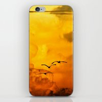 Flight at the Golden Hour iPhone & iPod Skin