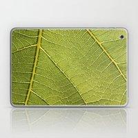 Fig Leaf Laptop & iPad Skin
