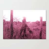 beauty of nature 4 Canvas Print