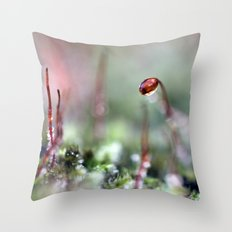 Another little frosty moss macro Throw Pillow