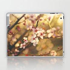 Cherry Blossoms at sunset Laptop & iPad Skin