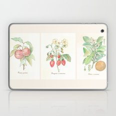 Vintage Botanical Fruit Laptop & iPad Skin