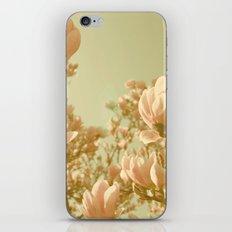 SUNDANCER iPhone & iPod Skin