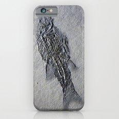 Semionotus iPhone 6s Slim Case