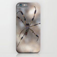 Spider 1 | Picture A Slim Case iPhone 6s