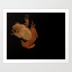 Window Frog Art Print