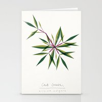 Crab Grass Modern Botanical Stationery Cards