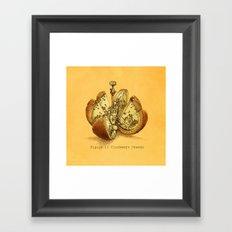 Steampunk Orange  (color… Framed Art Print