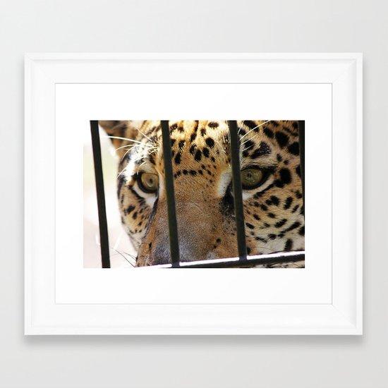 Hungry Eyes Framed Art Print