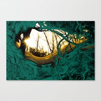 root roof Canvas Print