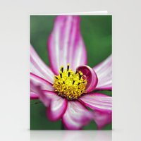 Welcoming Stationery Cards