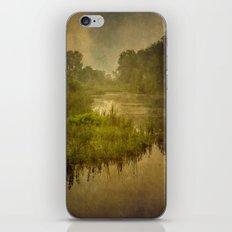 Wetland two iPhone & iPod Skin