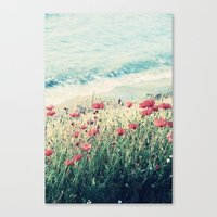 Sea of Poppies Canvas Print