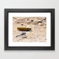 Bullet With Dragonfly Wi… Framed Art Print