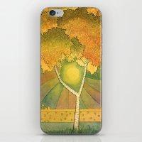 Birch 2 iPhone & iPod Skin