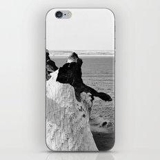 Beachwood II iPhone & iPod Skin