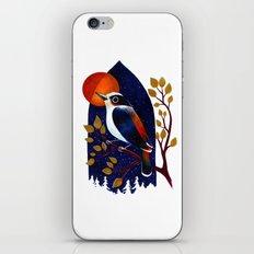 Window Bird iPhone & iPod Skin