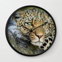 A Leopards Gaze 2 Wall Clock