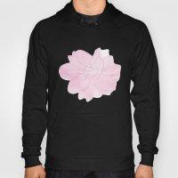 Gardenia Hoody