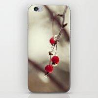 early winter iPhone & iPod Skin