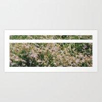 Bloomed Art Print