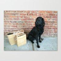 Puppy LOUBe Canvas Print