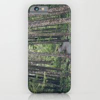 iPhone & iPod Case featuring A walk through the trees by Melanie McKay