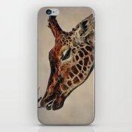 iPhone & iPod Skin featuring Giraffa Camelopardalis by CreativeByDesign