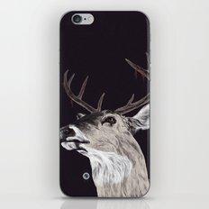 Deer (remindeer) iPhone & iPod Skin