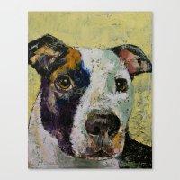 Pit Bull Canvas Print