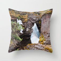 With time... Throw Pillow
