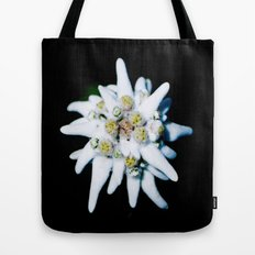 Single isolated Edelweiss flower bloom Tote Bag