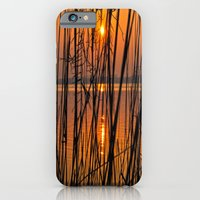 iPhone & iPod Case featuring Nature Sunset by Lo Coco Agostino