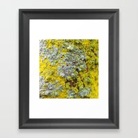 Moss! Framed Art Print