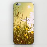 Country iPhone & iPod Skin