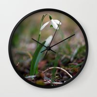 Snowdrop -  Spring Flower Nature Macro Photography Wall Clock