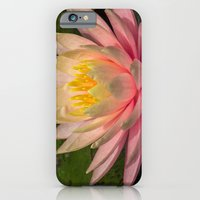 iPhone & iPod Case featuring Flower Series 3 by Michelle Chavez
