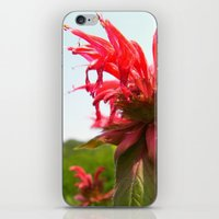 Spiked Red Flower iPhone & iPod Skin