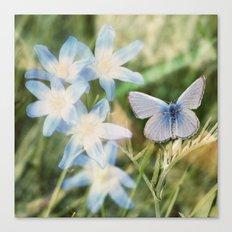 Butterfly :: Blue Sky Wings Canvas Print