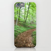 Into The Woods - Woodland Spring Path iPhone 6 Slim Case