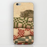 Cat Nap iPhone & iPod Skin