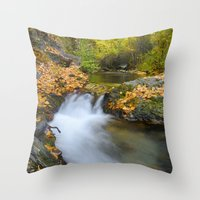 Into The Autumn Forest. Throw Pillow