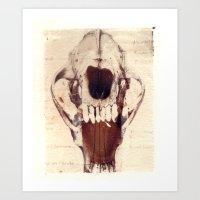 X Ray Terrestrial No. 3 Art Print